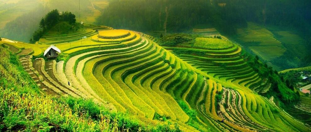 ozge-ersu-gezi-yazilari-yuzuklerim-vietnamda-olurse